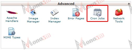 How to setup a cron job in cPanel