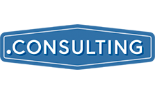 .CONSULTING Domain Name