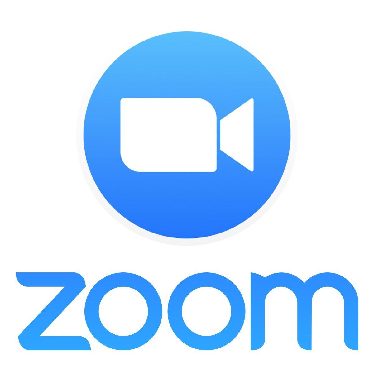 webcam emulator