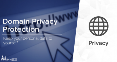 What is Domain Privacy Protection? Why do I need it?