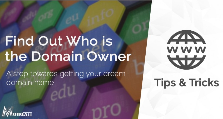 Find Out Who Is The Owner of a Domain name